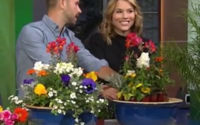 Good Day L.A. Segment – Designer Spring Pots & D.I.Y. Painted Vases
