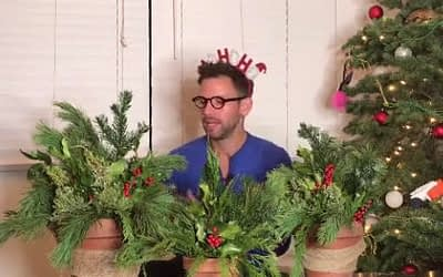 How To: Festive Holiday Pots! – greenTtime – episode 30